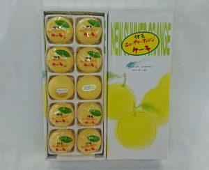 ニューサマーオレンジケーキ(大)15ヶ入 1,080円 / (小)10ヶ入 650円